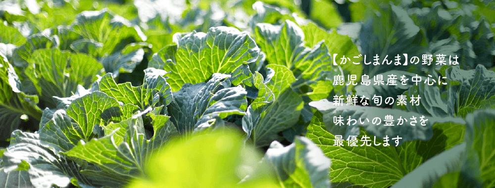 農薬、原料表示、放射能測定